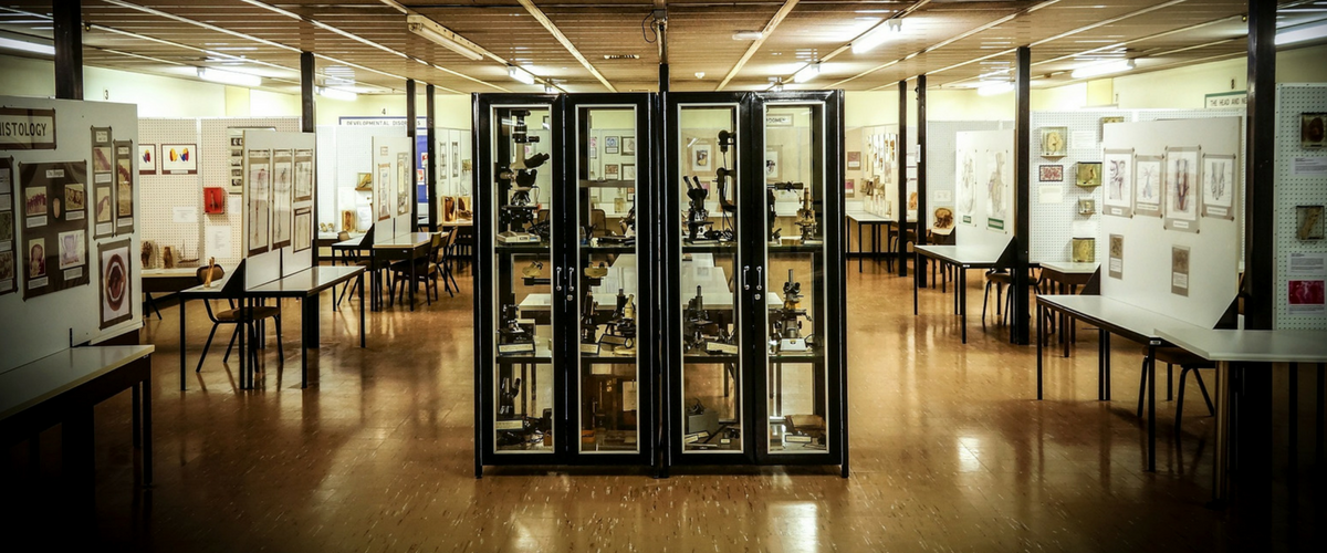 The Hunterian Museum of Anatomy - Wits University