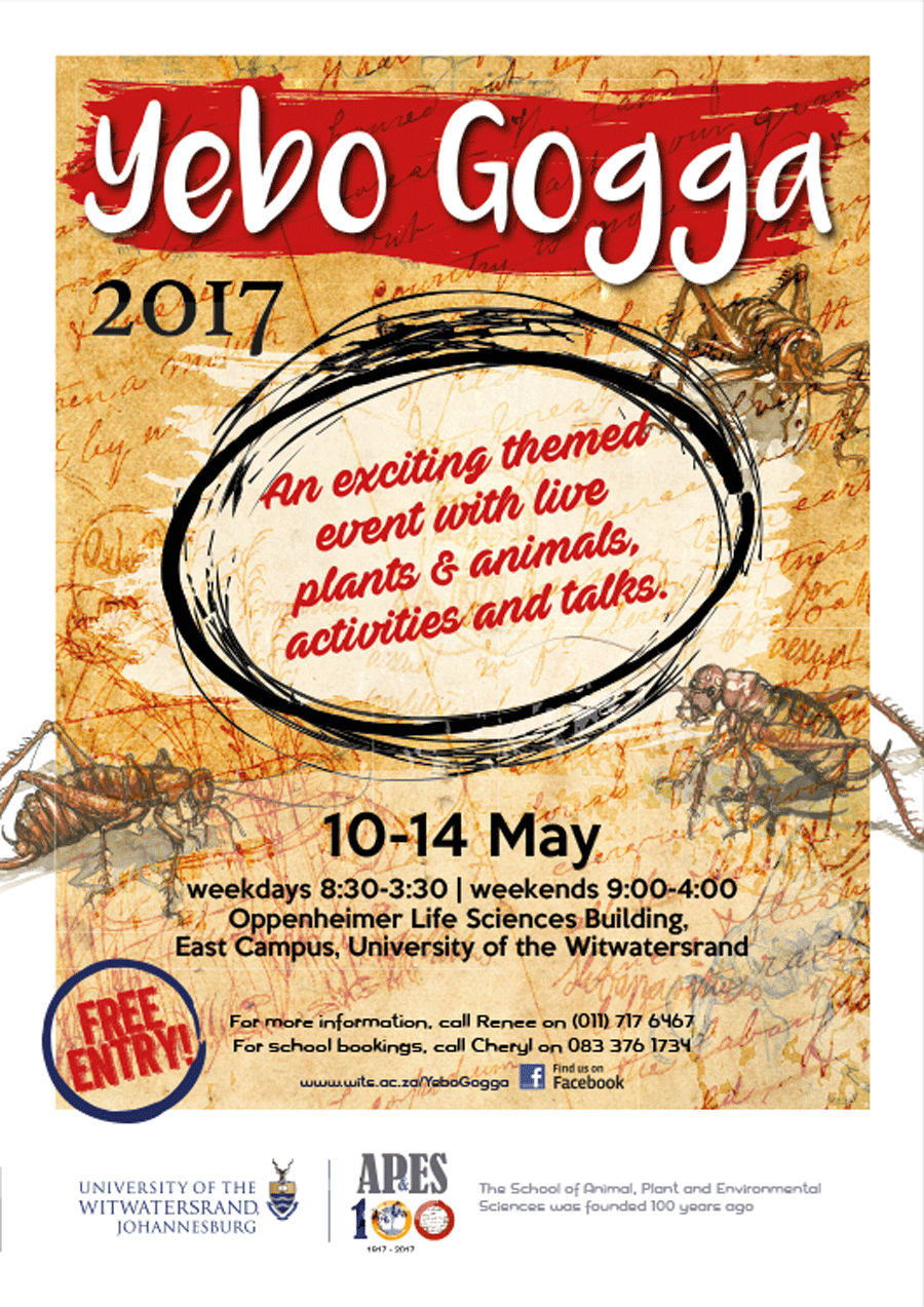 Come join us at the annual Yebo Gogga! 10-14 May 2017