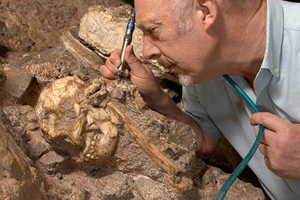 Ron Clarke excavating Litte Foot's skull