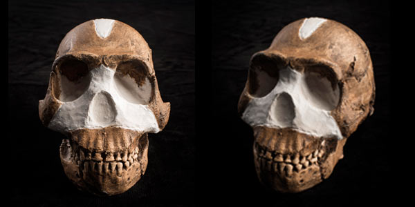 Dating Homo naledi