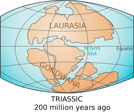 Gondwanaland in the Triassic