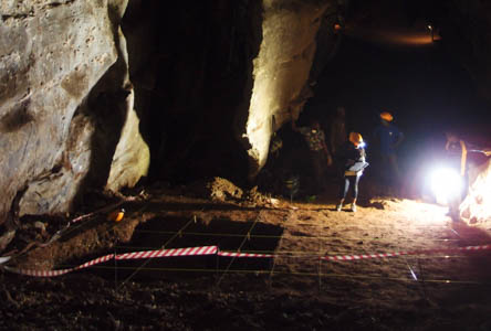 Excavations in the Milner Hall of the Sterkfontein Caves