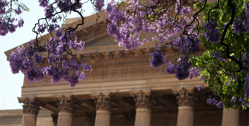 Wits Great Hall and jacaranda blooms