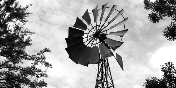 The windmill, iconic symbol of South Africa's Karoo. ©WitsUniversity