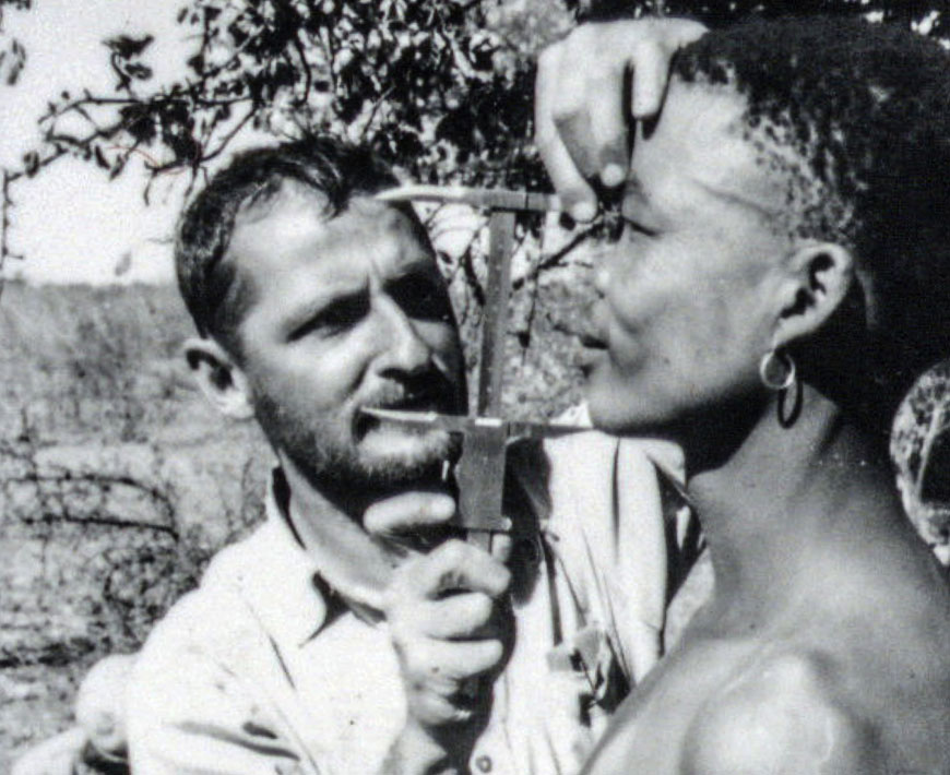 Wits University Professor Phillip Tobias measuring an unnamed person during an expedition to the Kalahari in the early 1950s.