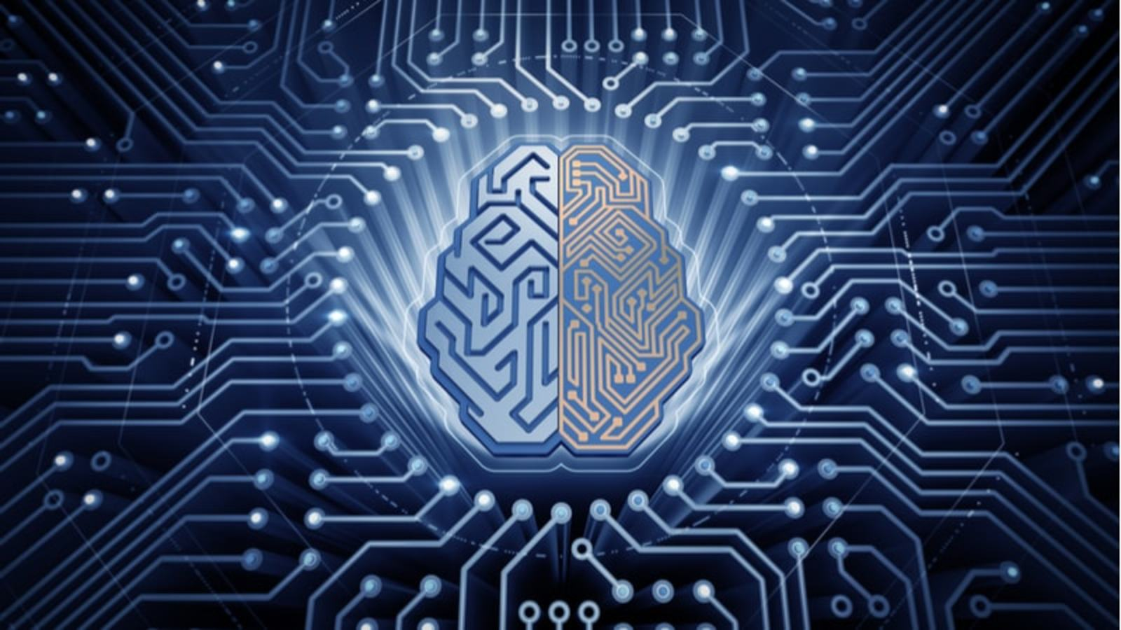 Machine Intelligence and Learning from Experience (MILE)